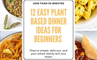 12 Easy Plant Based Recipes for Beginners