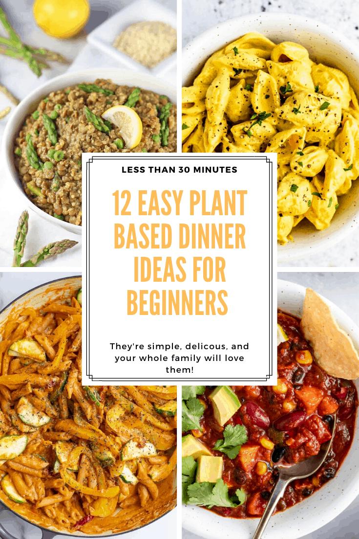 12 Easy Plant Based Dinner Recipes for Beginners