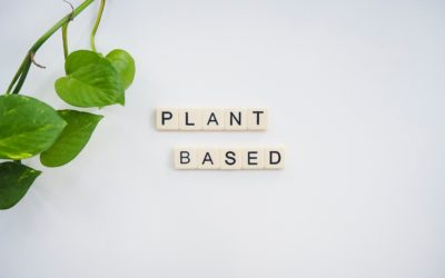 Plant Based vs Vegan – What's the Difference?